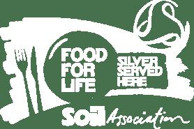 FFL-Silver-Logo